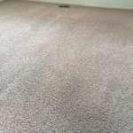 Springs Carpet Cleaning